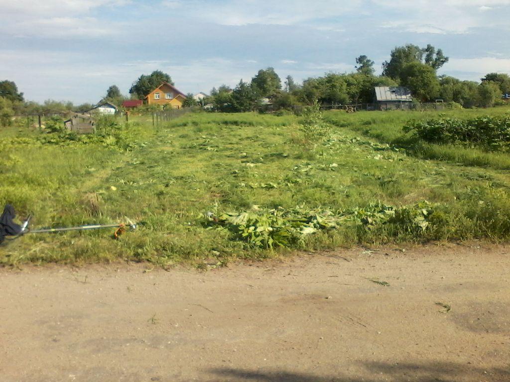 Погода на завтра кировское донецкая область